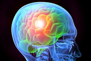 mozek, trénování paměti