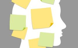 imaginace-profil_hlavy-memorysticky