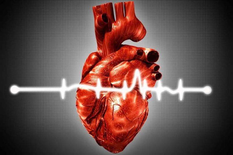 srdce-krivka