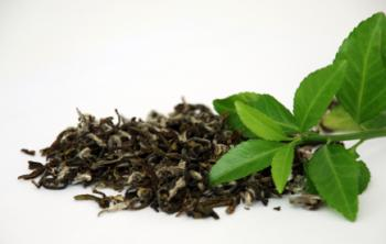 zelený čaj sušený