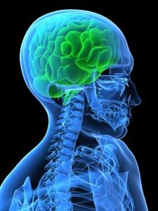 kontrola mozku při mikrocefalii