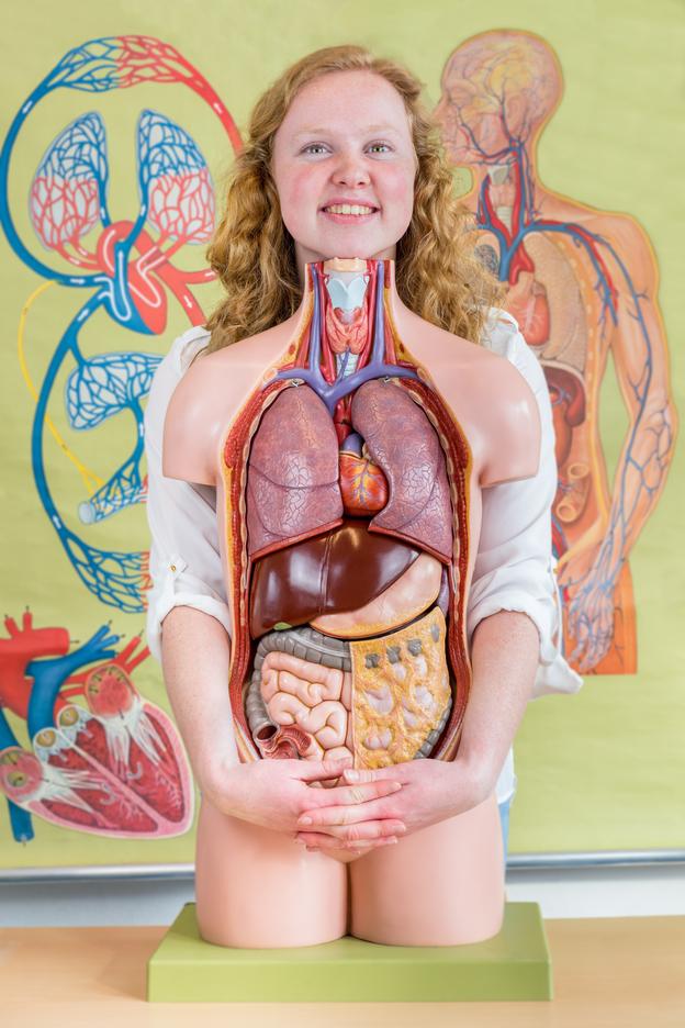 IBD studentka s modelem těla